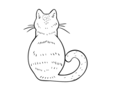 <span class='hidden-xs'>Coloriage de </span>Chat retour à colorier