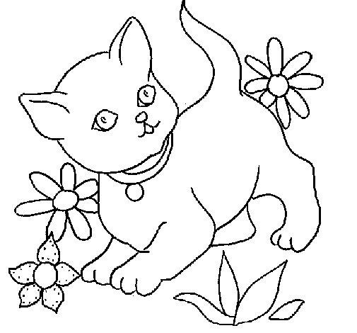 Coloriage de chaton pour colorier - Chaton coloriage ...