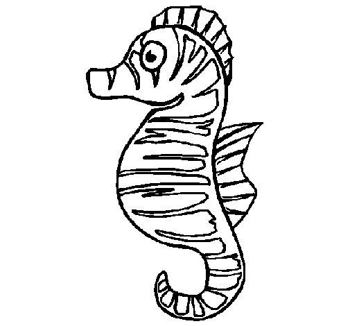Coloriage de Cheval de mer pour Colorier