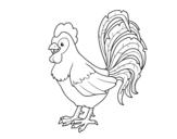 <span class='hidden-xs'>Coloriage de </span>Coq ferme à colorier