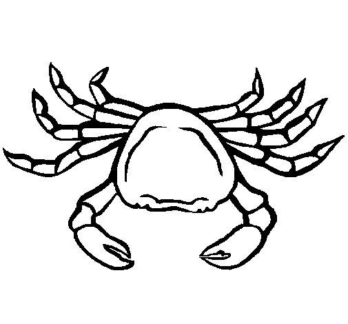 Coloriage de Crabe de mer pour Colorier