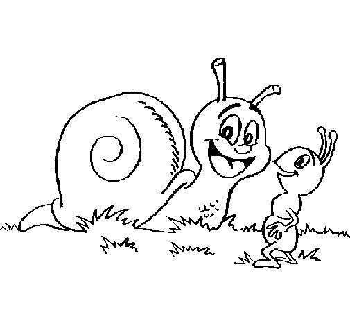 Coloriage de Escargot et petite fourmi pour Colorier