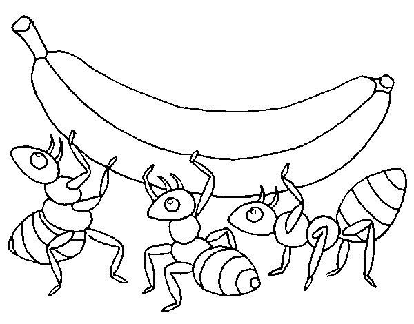 Coloriage de fourmis la banane pour colorier - Dessin de fourmi ...