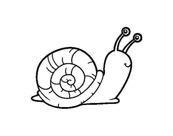 Coloriage de L'escargot pour Colorier