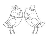 <span class='hidden-xs'>Coloriage de </span>Oiseaux de mariage à colorier