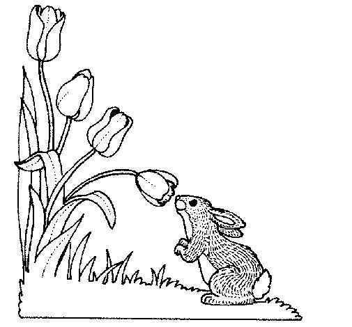 Coloriage de petit lapin pour colorier - Coloriage petit lapin ...