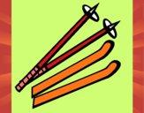 Bâtons de ski