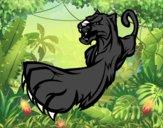 Griffe de panthère