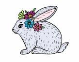 Coloriage Lapin printanier colorié par magiee