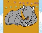 Rhinocéros 1
