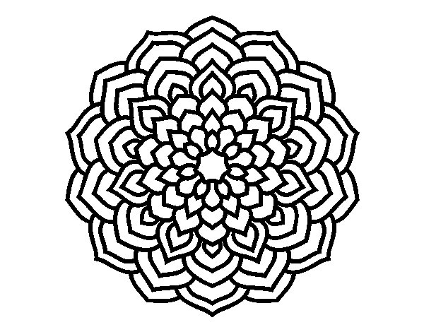 mandala petales de fleur