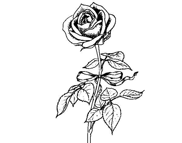 Coloriage de Une rose pour Colorier - Coloritou.com
