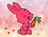 Lapin souriant